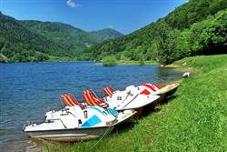 Eco-Friendly paddle boats on a green grass shore with rolling green hills in the background
