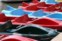 Paddle boats lined up at the dock