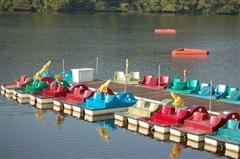 paddle boats on still water at the dock